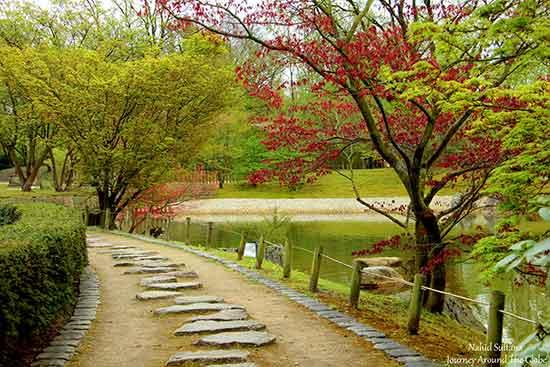 дорога в японском саду