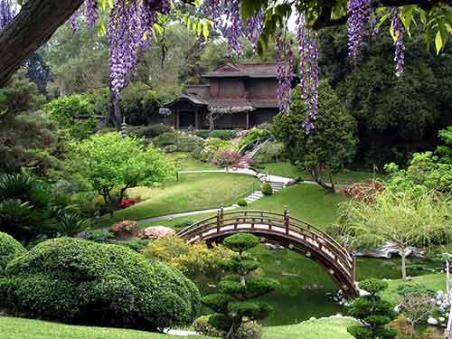 японский сад с мостом