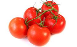 с чем рядом можно посадить томаты