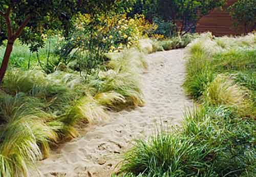 песчаная дорожка в саду