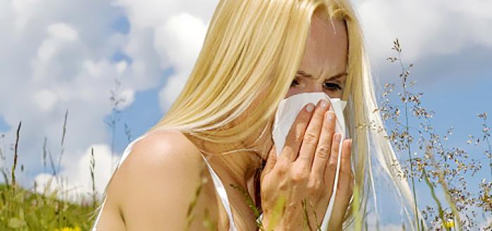 опасные растения для аллергиков