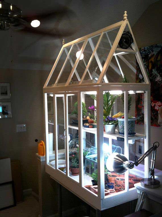 стеклянная теплица в доме